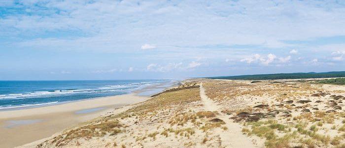 Vacances à Biscarrosse : à quelles activités de plein air s'adonner ?